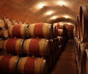 土酒窖被譽為世界最優質酒窖(01.05)