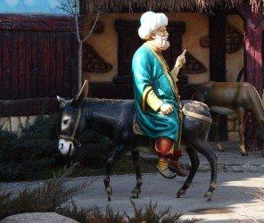 「倒騎驢子」競賽紀念土耳其幽默大師(07.11)